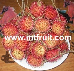 IQF Frozen Fruit from Vietnam
