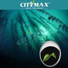 Chemical Natural Seaweed Fertilizer