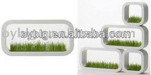 biodegradable hydroponic planter