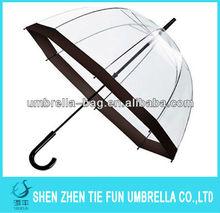 Transparent kid's umbrella