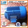 Ltp Y Series AC Induction Motor 45kw