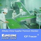 IQF Freezer For frozen beef tripe