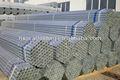zincato recinzione cavallo pipei pannelli da adto gruppo per la costruzione