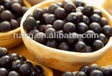 brazilian acai berry extract