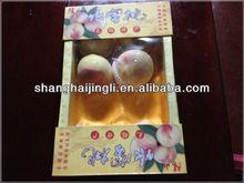 PAPER FRUIT PACKAGING BOX CARTON BOX