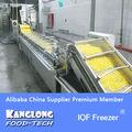 de alta eficiencia del congelador iqf congelados para pollo a granel
