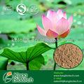98% lotusblatt p. E. Nuciferin pulver/kraut abnehmen
