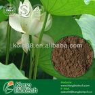 Herbal Supplement,Nuciferine Powder,chinese slimming capsule