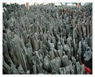Thai Mangrove Wooden Charcoal
