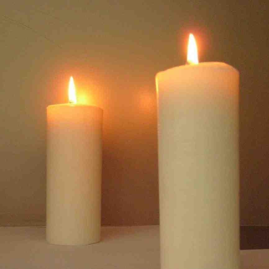 Palma de cera velas velas identificaci n del producto - Proveedores de velas ...