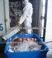 pescado aislados recipientes de plástico
