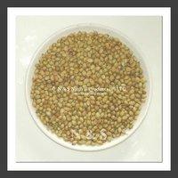 export coriander