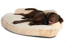 Great Paw Comfort Corner Dog Bed