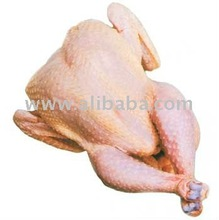 Fresh Chicken Meat