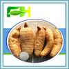 Best Quality Natural Gastrodin Powder/Tall Gastrodia Tuber P.E.