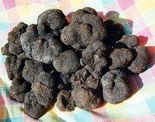 Black Truffles (Origin Italy)
