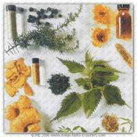 Herb Plants Dried (Indian Origin)