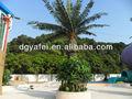 En plastique grand palmier/imitation haute arbre