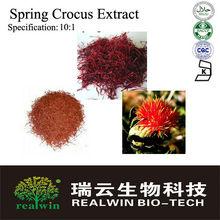 Super Spring Crocus Extract/Spring Crocus Powder 10:1