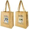 Promotional PET nonwoven shopping bag/ R-PET shopping bag