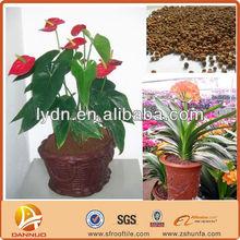 decorative artificial bonsai potting soil