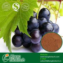 Grape Seed P.E.95%OPC Oligomeric proanthocyanidins extract from grape seed