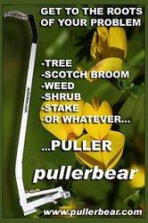 Puller Bear