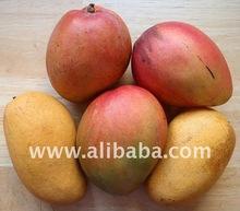 Fresh Mango, Frozen Mango, Mango Seeds (stones)