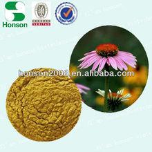 Echinacea Extract of polyphenol 4% UV cichoric acid 0.2% HPLC