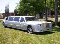 exotic limousine