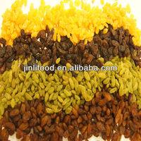 chinese raisin light brown sultana raisin sell dried fruit