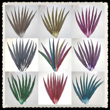 30-35 cm pheasant tail feathers