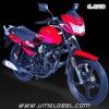 MOTORCYCLE REV