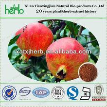 Natural Plant Extract/ Pomegranate Peel Extract (Ellagic Acid 40%)