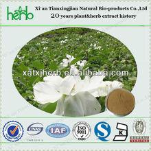 Antioxidant Plant Extract Tree Peony Bark Extract/ Paeonol