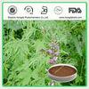 Chinese Herb Medicine Motherwort Extract