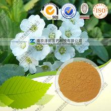 Natural Spiraea salicifolia L.~Salicylic acid 90%