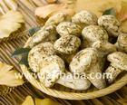 Grade 1 Fresh & Dried Matsutake Mushrooms