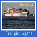 Lo mejor del mar de envío de china a'tijuana----- elizabeth