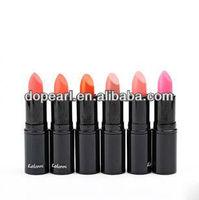 Professional makeup wholesale long lasting lipstick kit cosmetics