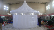 2013 New trading show/advertising with Inflatable dome