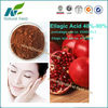 Nutritional Supplement Pomegranate Skin Extract 40%-90%