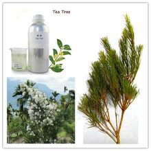 Australian Tea Tree Essential Oil