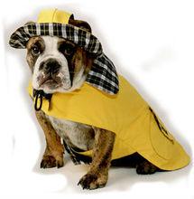Waterproof Large / Small Dog Raincoat for Poodle, Mini Schnauzer