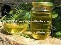 RBD Palm Stearine Oil