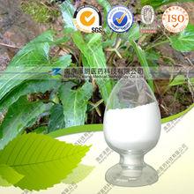 Bunge Corydalis herb