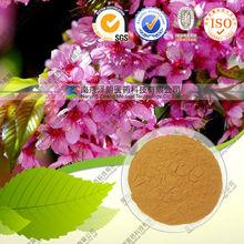100% Nature Ashwagandha Extract/ Withanolid 3%