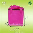 2013 Fashion Portable Non woven bottle cooler Bag