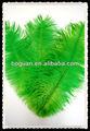 """Avestruz drabs 14-16"""" penachos de plumas"""