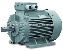 CAG 18.5kW IE 2 Cast Iron Frame Three Phase Electric Motor